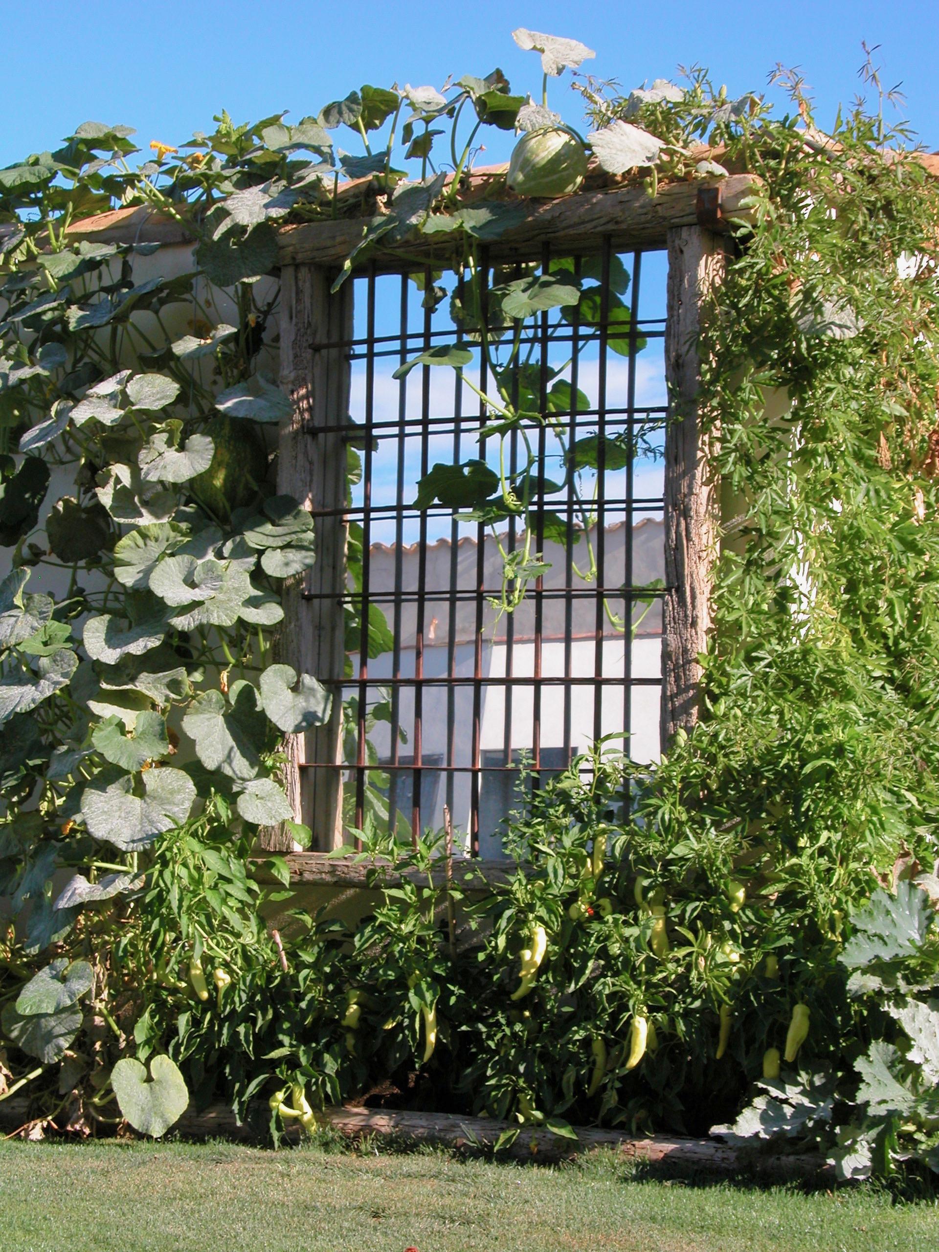Espejo en el jardín